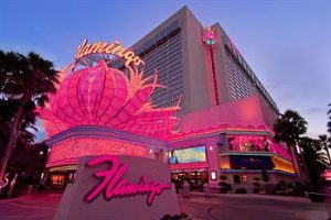 Flamingo - Best Promo Rates