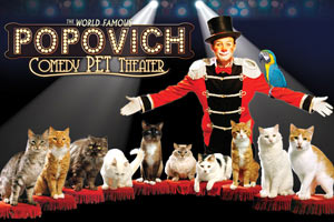 Popovich Comedy Pet Theater – 50% OFF Special Offer