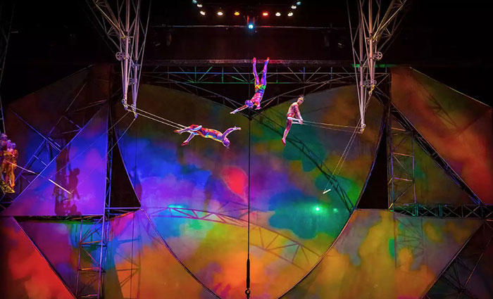 A high wire act, Mystere by Cirque du Soleil.