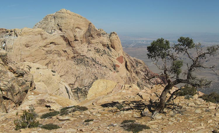 red rock canyon hiking trails