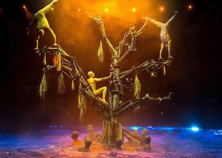 Le Reve cirque show in vegas
