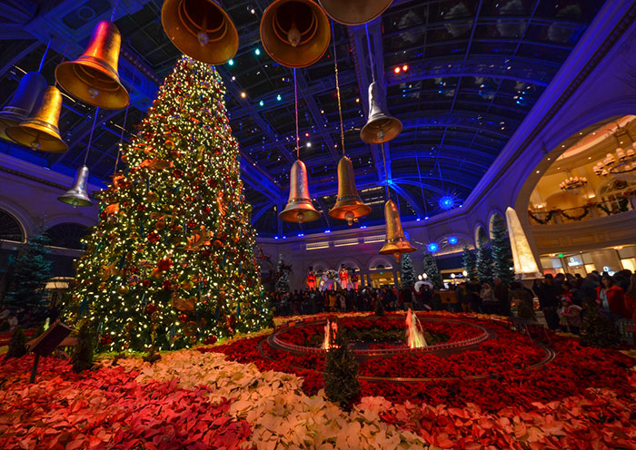 Christmas Lights at Bellagio