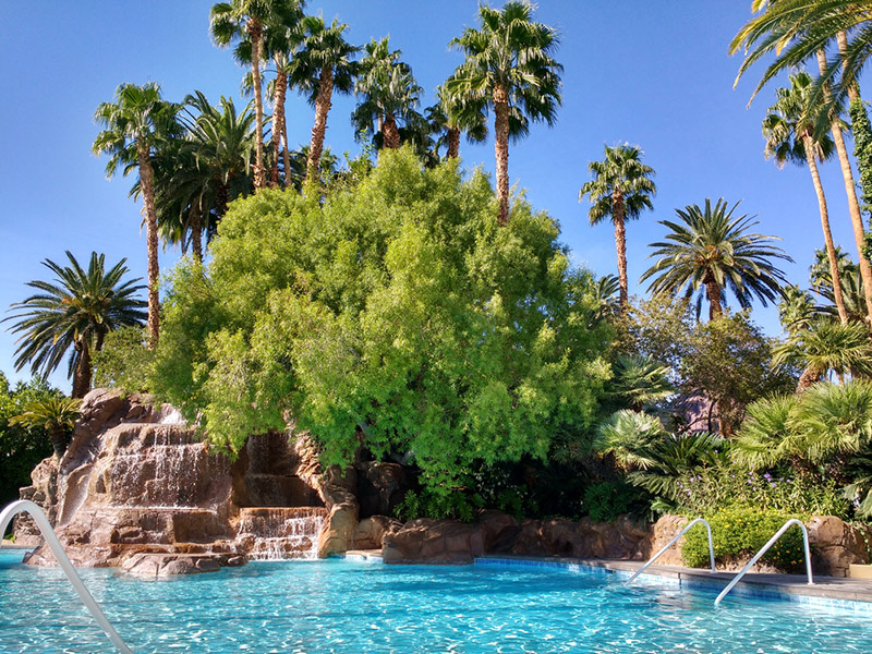 Mirage top pool in vegas